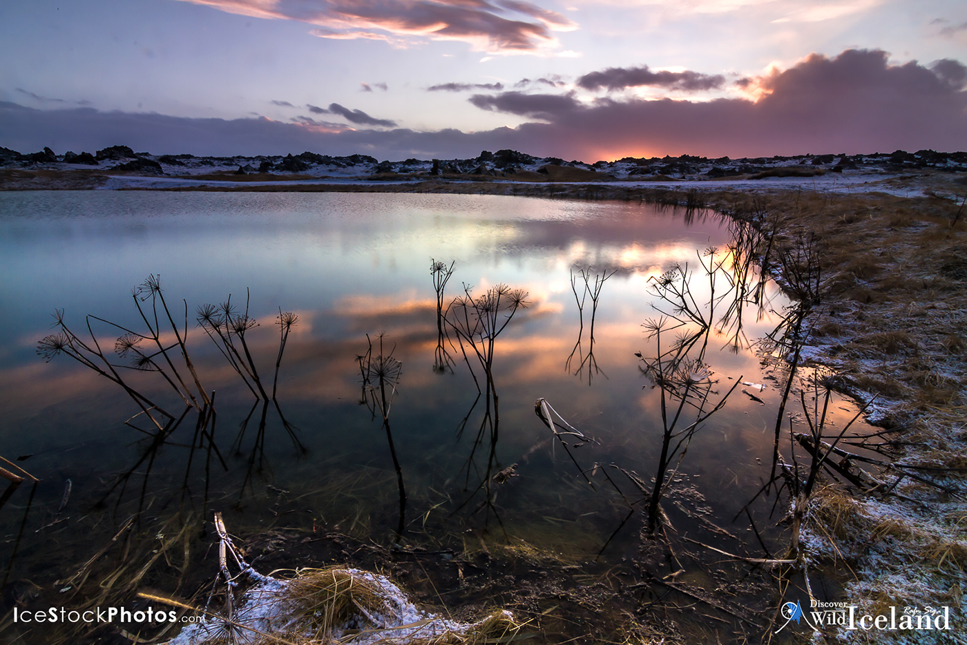 Discover Wild Iceland - lake near Stóra Sandvík